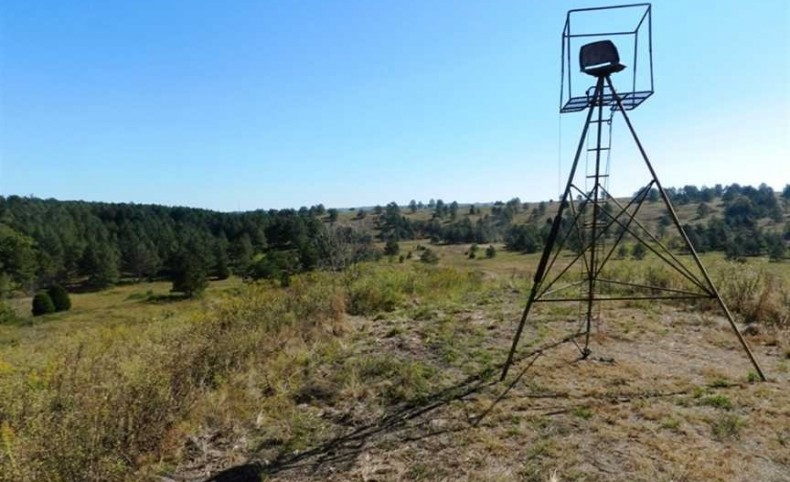 A Hunter and Fisherman's Dream -- 960 Acres, Walker County, Alabama