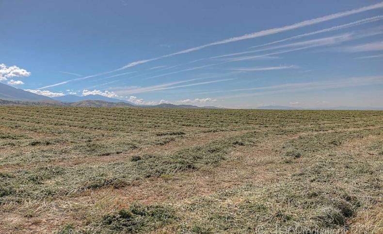 Spring Creek Elk Ranch