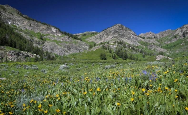 Wasatch Peaks Ranch