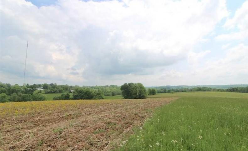 Lutz Lane - 173 acres - Muskingum County