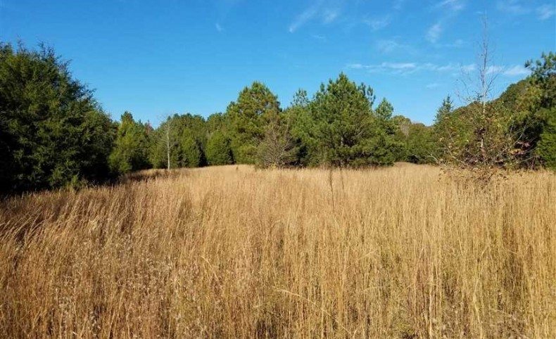77.48 Acres in York County