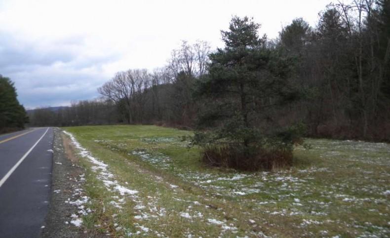 22 Private Country Acres w/ Stream Caroline NY