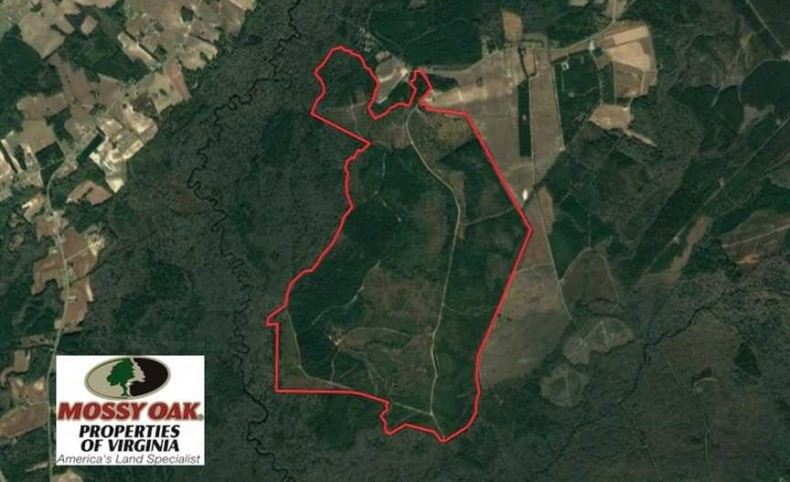 1337 Acres of Hunting and Timber Land For Sale in Robeson County NC!