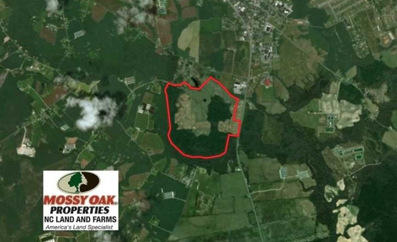 382 Acres of Farm and Timber Land For Sale in Onslow County NC!