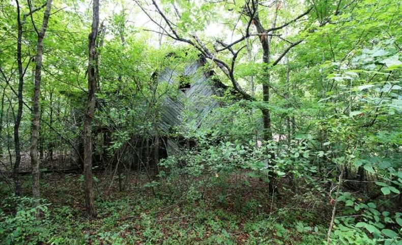 1000 +/- Acres For Sale in Wayne County, Mill Spring, Missouri