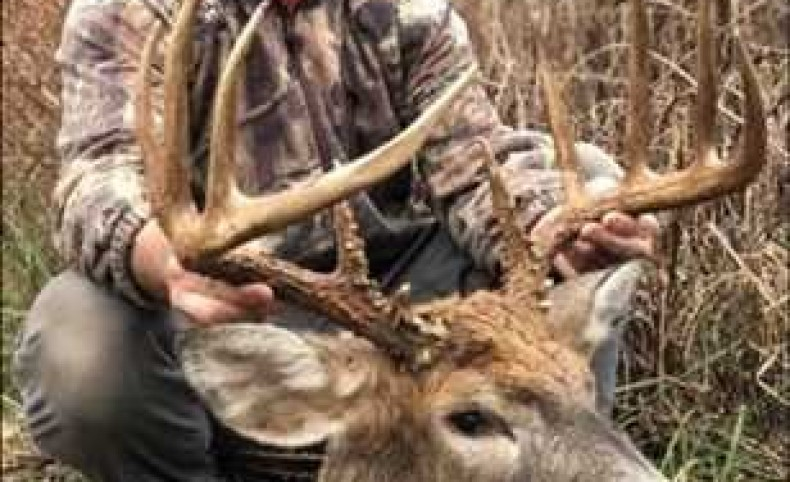 271 Acres - Incredible Hunting with cozy cabin