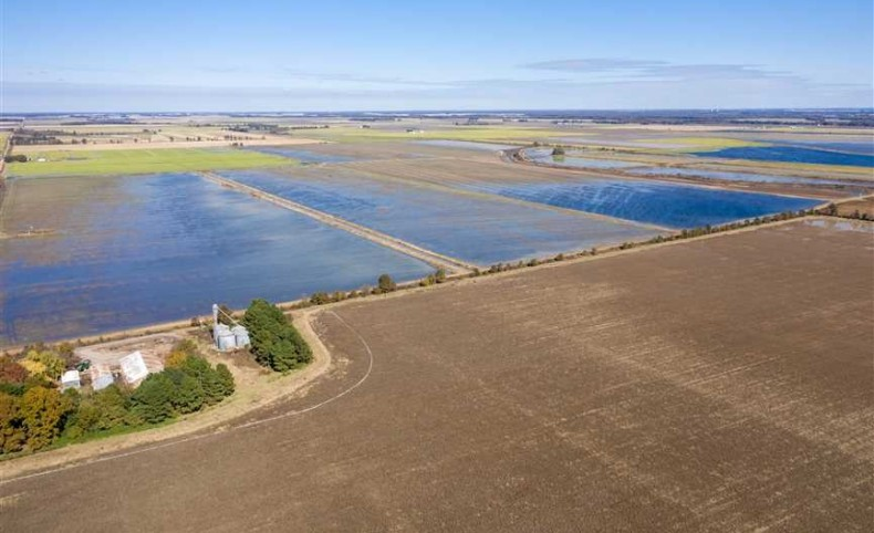 681 +/- Row crop Farmland Acres, 75% Precision Leveled,Tail Water Recovery System,5 pits for Duck hunting Income, Poinsett County, Fully Improved Farm Ready to Make Income, small cabin