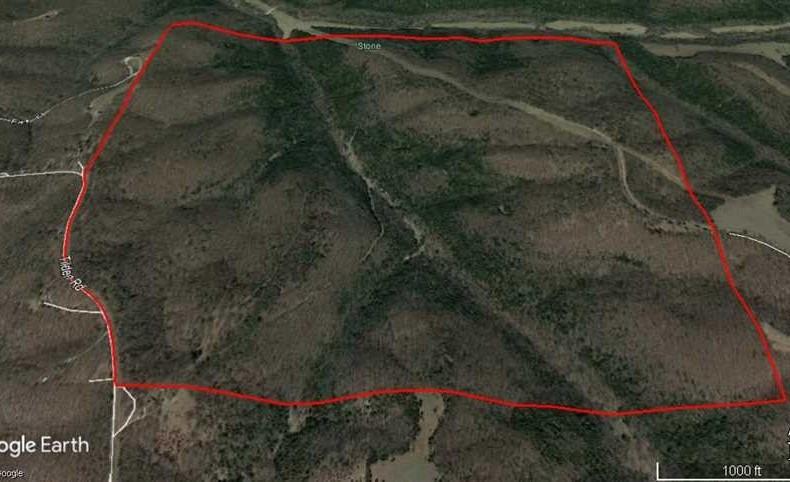 Development/Recreation Property Near Galena, Missouri