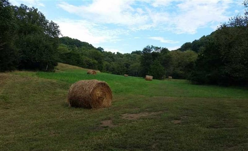 106 Acres - Bell Buckle Tennessee Beauty