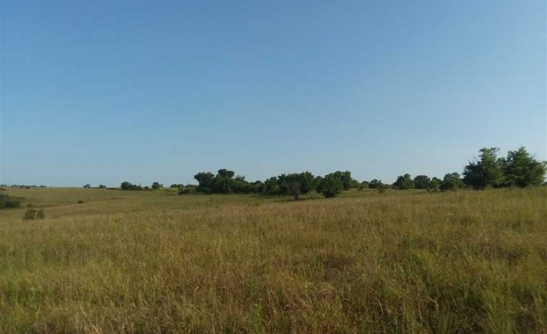 Price Reduced 1184 Acres, in Chautauqua County, Kansas. Big Buck & Cattle Ranch!!