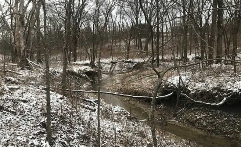 Northern Missouri Great 270 Acres CRP and Tillable Farm with Excellent Hunting