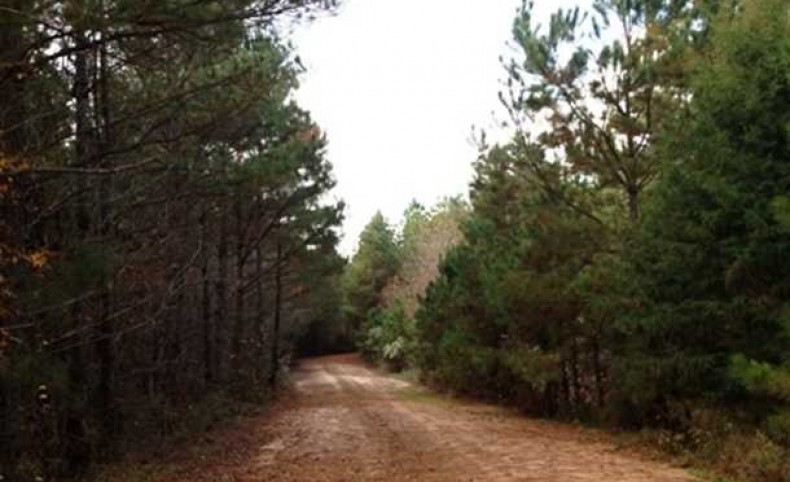 Premier Hunting, Recreational and Timber Land - Brookson Plantation - 6395+/- acres for sale in Noxubee County, MS. Was 7495 acres but SOLD TRACT C- 1100 acres-12/17. Tract B consisting of 2950+/- acres can be purchased separately.