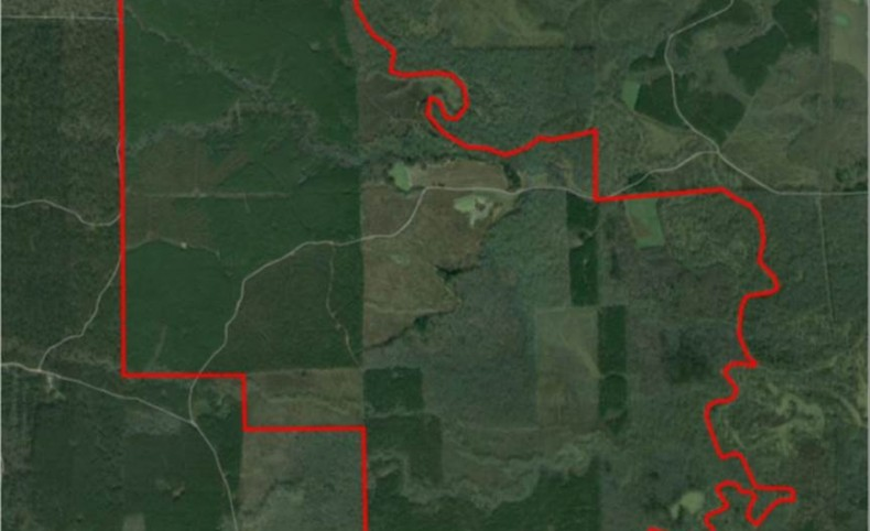 Premier Hunting, Timber & Recreational Land For Sale in Noxubee Co., MS- 2950+/- acres-Tract B of Brookson Plantation - MOPLS#15647