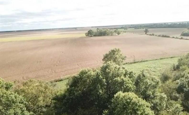 151.56 Acre Farm in Barton County, Missouri - 114.5 Acres Tillable & 37 Acres of Pasture