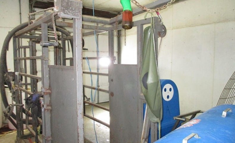 Large Expandable Dairy! 130+/- Acres, Clark County, Wisconsin