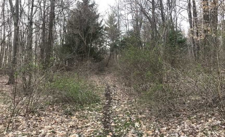 New Guilford Rd - 115 acres - Knox County