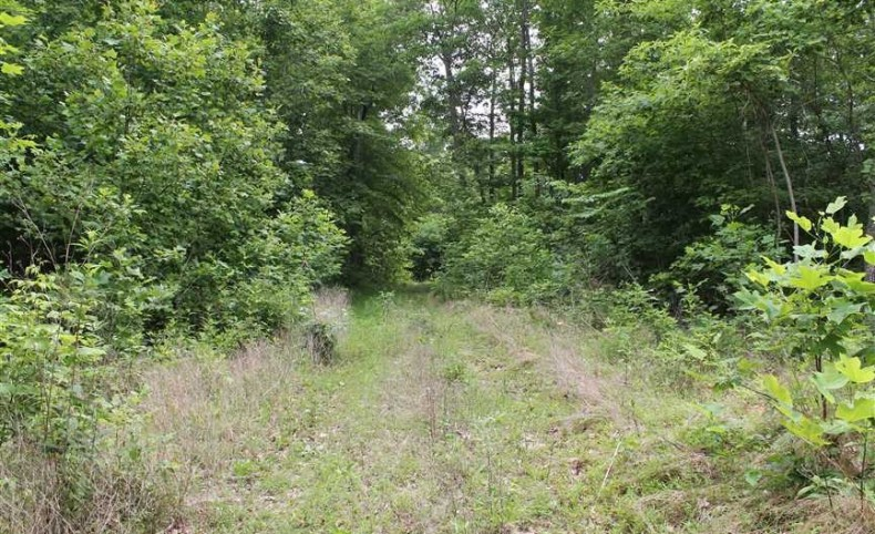1,012 Timberland Acres in Jackson County, Tennessee. Excellent hunting and recreational tract.