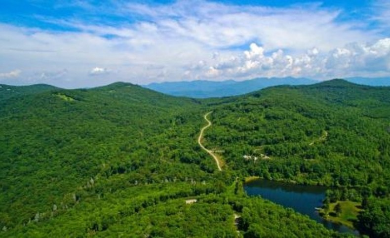 High Elevation Property For Sale in Asheville, NC