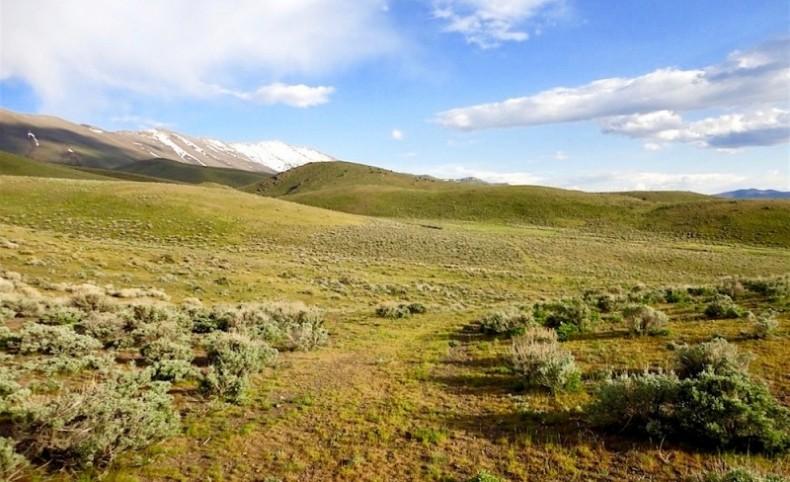 Torre Creek Ranch