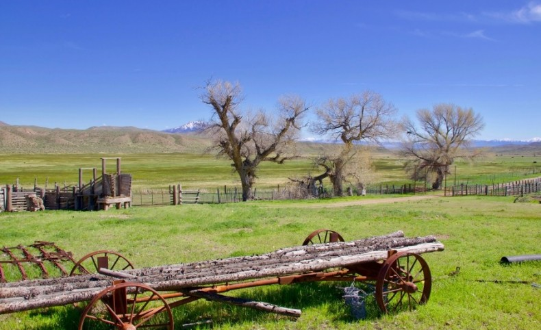 Pleasant Valley Cattle Ranch