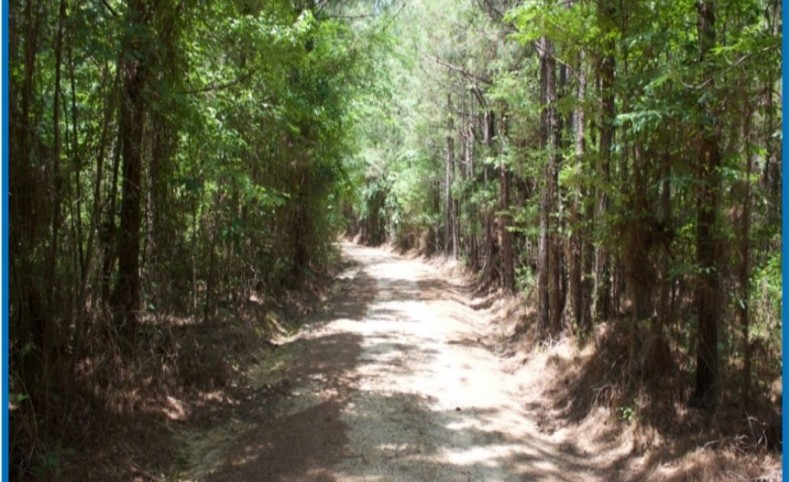1671 Acres in Leake County