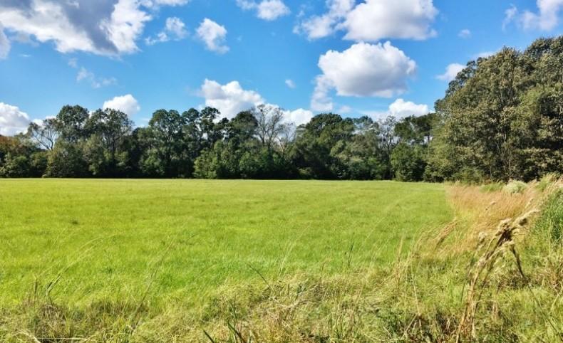 Acreage with Lakes for Sale East Baton Rouge Parish, LA