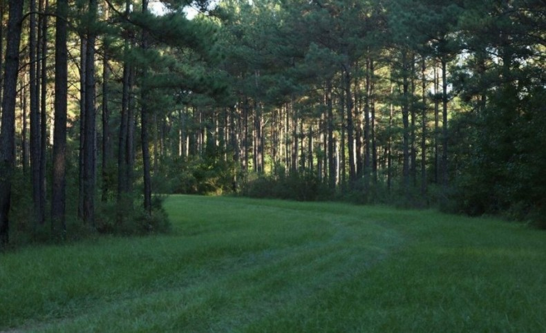 Mississippi Hunting Property for Sale