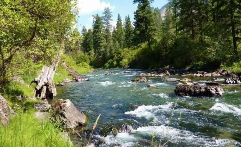 Western Montana Thompson Riverfront Land