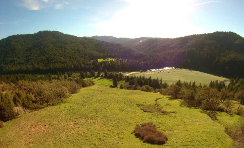 Brushy Mountain 821 +/- Acres