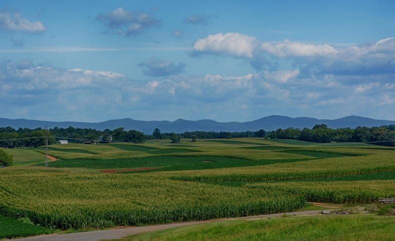 736+/- Acre Farm for Sale in Virginia