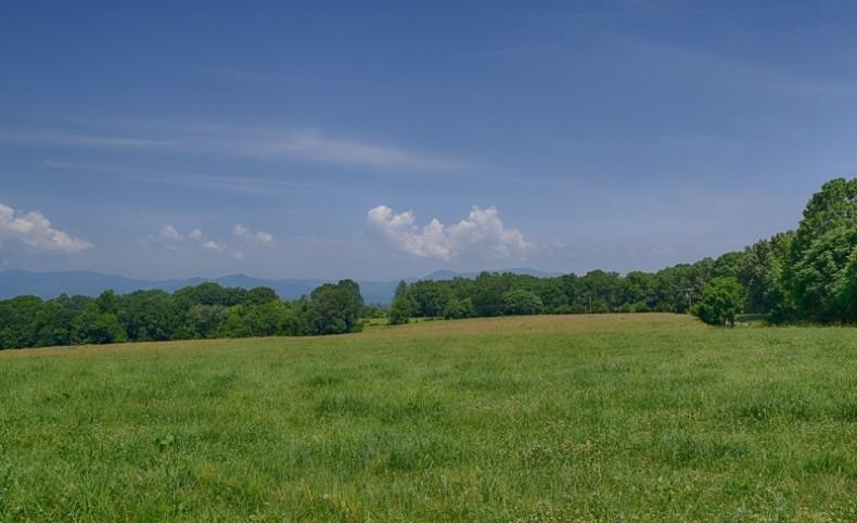 330 Acre Cattle Farm in Nelson County