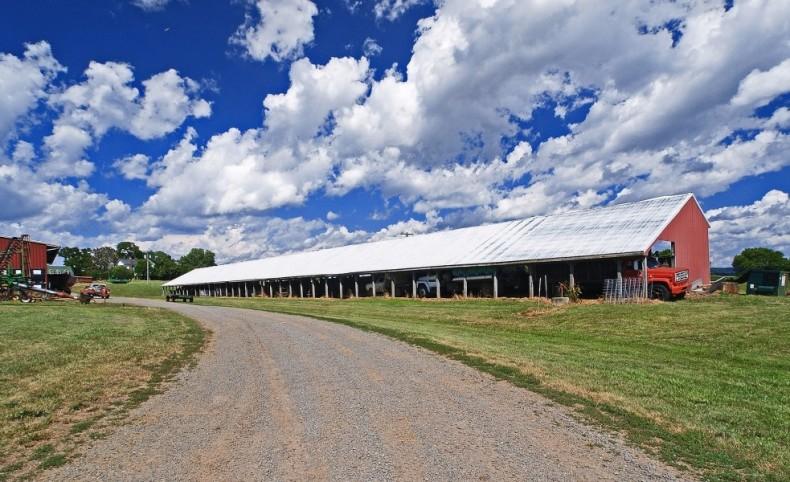 Madison County Cattle Farm