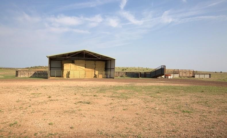 The Freeman Ranch