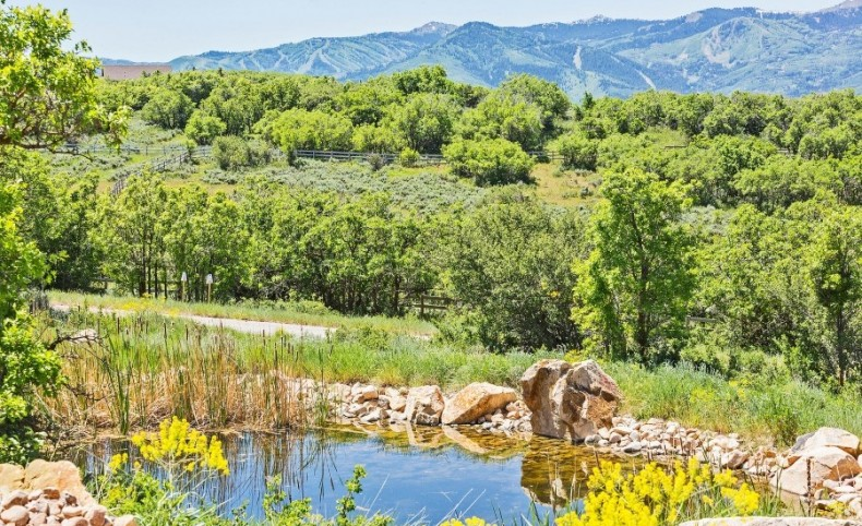 Build Your Dream Luxury Ranch!