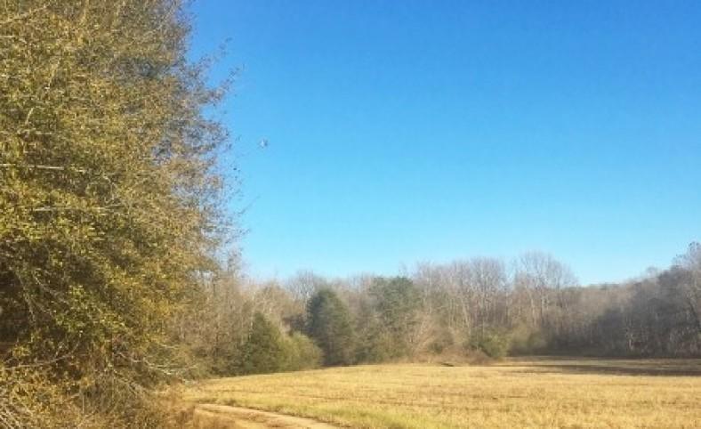 Greene Co. Farm