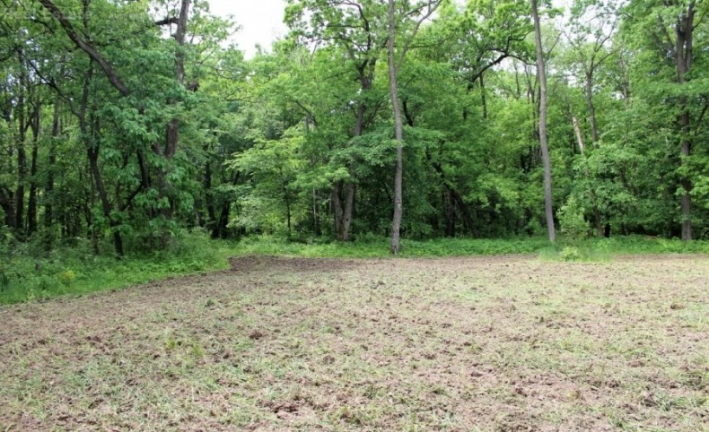 Luxury Cabin with Trophy Hunting Land in Buffalo County, WI