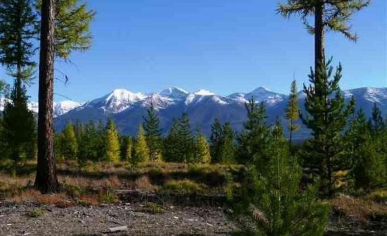 Elk Creek Preserve