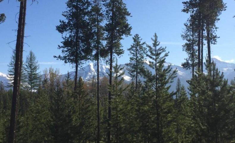 Mission Mountain & Swan Range Views 30 Acres