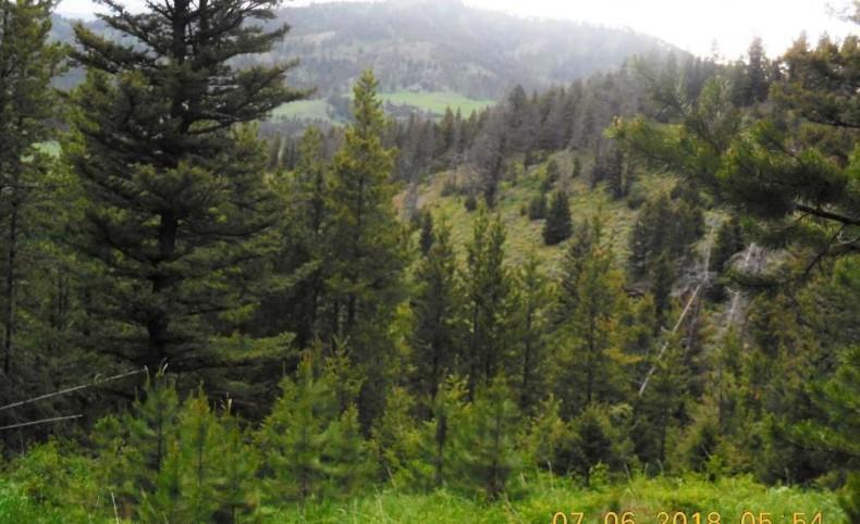 Elk Mountain Property