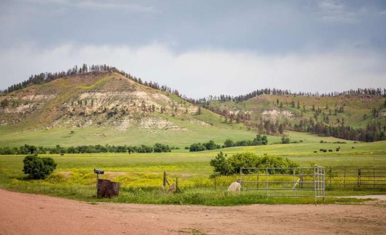 Tongue River Ranch