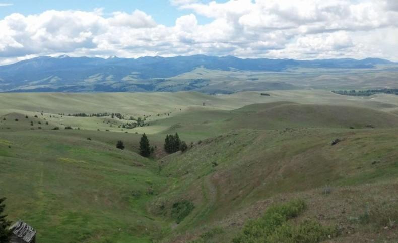 Limestone Ridge Ranch