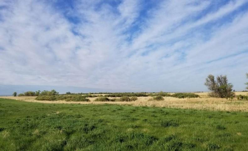 Pheasant Hunting Retreat - 280 acres  & Home