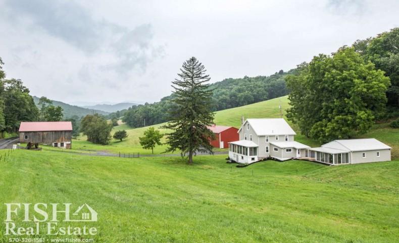 Pine Run Farm