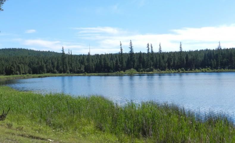 Island Lake Retreat