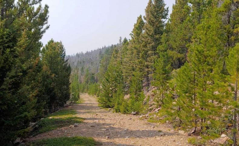 Remote Mountain Top Retreat