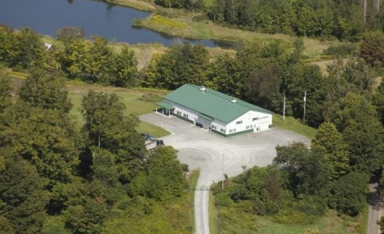 Springville Commercial/Recreational Property
