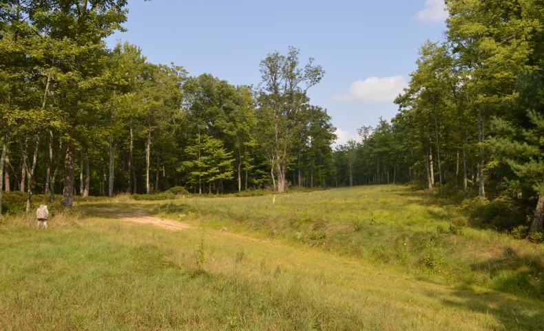 731 Acres in the Heart of the Marcellus Shale Play