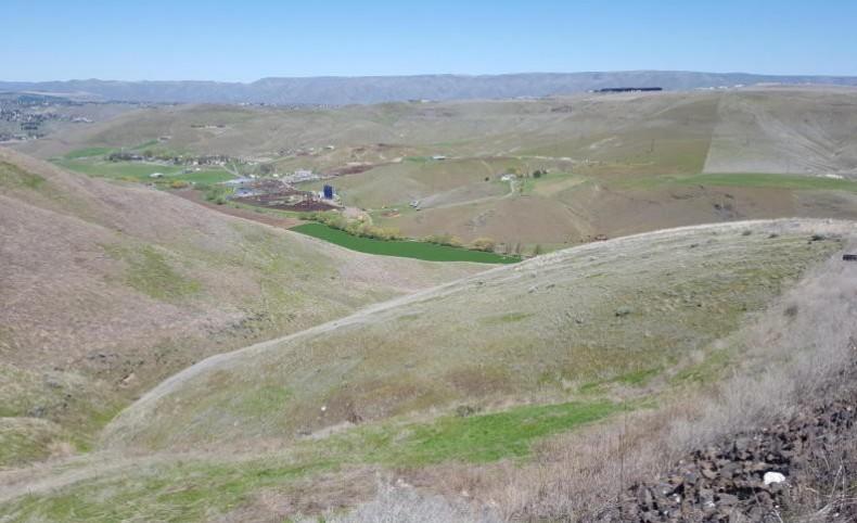 River Rock Ranch Lot 7