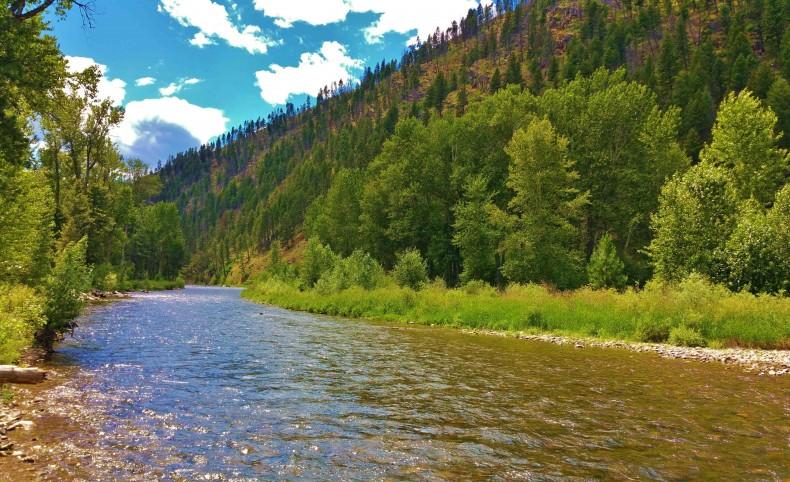 Blue Ribbon Rock Creek Western Montana