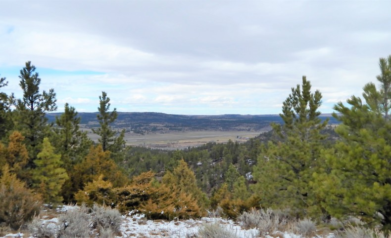 Yellowstone River Valley Views
